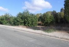 Land  for sale in Emba Ref.SB10839